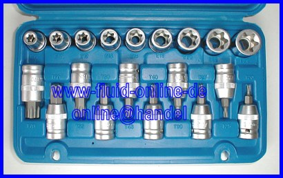 Torx Satz Nsse 19 teilig